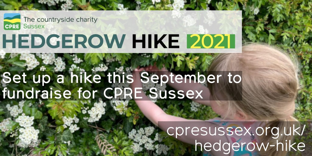 CPRE Sussex Hedgerow Hike September 2021
